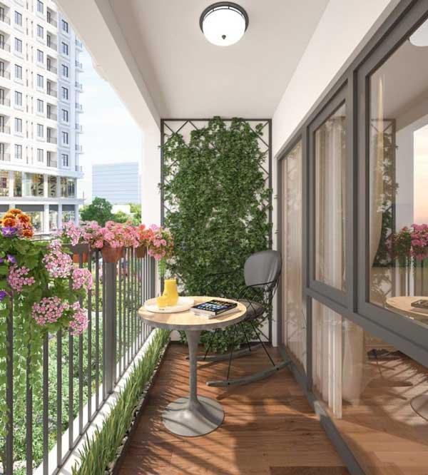 [Giải đáp chi tiết] Ban công chung cư nên trồng cây gì? 1
